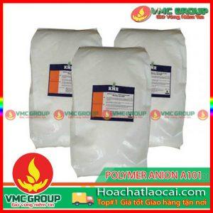 POLYMER ANION A1120 HCLC
