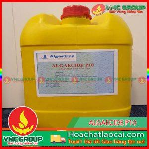 ALGAE CIDE P10 HCLC