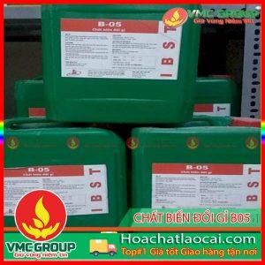 CHẤT BIẾN ĐỔI GỈ B-05- HCLC